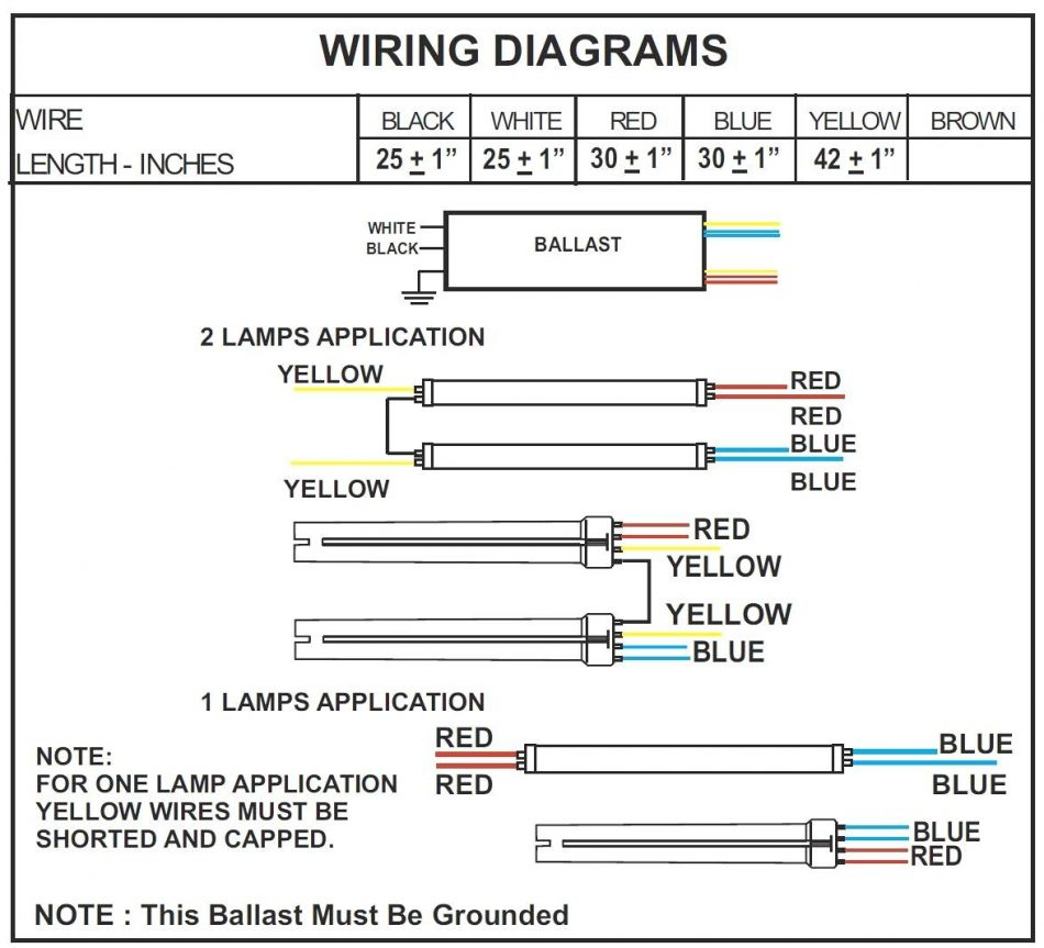 4 Lamp T5 Ballast Wiring Diagram Gallery  Bulb Ballast Wiring Diagram on