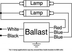 4 Lamp T5 Ballast Wiring Diagram - T8 Electronic Ballast Wiring Diagram Webtor Me and for Lamp 1b