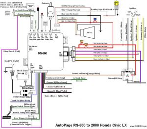 Big Dog Wiring Diagram - Big Dog Wiring Diagram Lovely Bulldog Wiring Dolgular 20a