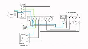 Chromalox Immersion Heater Wiring Diagram - Chromalox Immersion Heater Wiring Diagram New Space Heater Wiring Diagram Sample 17q