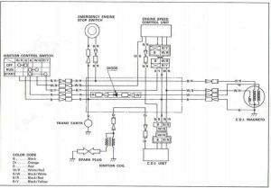 Coolster 125cc    atv       Wiring       Diagram    Collection