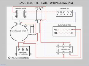 Electric Heat Strip Wiring Diagram - Electric Heat Strip Wiring Diagram Lovely Simple Goodman 19p