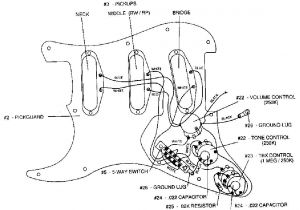 Fender Hot Noiseless Wiring Diagram - Fender Vintage Noiseless Pickups Wiring Diagram Lovely Strat Wiring Diagram Schematic Stratocaster Guitar Culture 11c