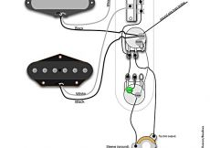 Fender Telecaster 3 Way Switch Wiring Diagram - Standard Tele Wiring Diagram 3n