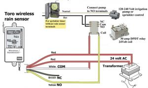 Intermatic Timer T104 Wiring Diagram - How to Wire and Connect A Intermatic Pool Pump Timer T101r Youtube Rh Acousticguitarguide org 6t