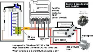 Pentair 2 Speed Pump Wiring Diagram - Wiring Diagram Pool Pump for 230 Volt Circuit Beautiful Afif within Sta Rite 5b