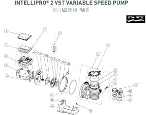 Pentair Superflo Pump Wiring Diagram - Intellipro 2 Vst Variable Speed Pump Parts 2d