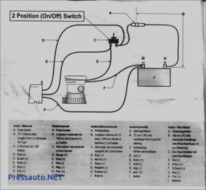 Rule 1100 Gph Automatic Bilge Pump Wiring Diagram - Amazing attwood Bilge Pump Wiring Diagram Seasense 800 Gph Inside 6q