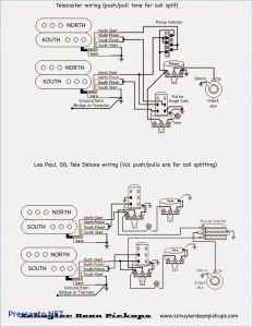 Sg Guitar Wiring Diagram - Wiring Diagram for Sg Guitar Best Gibson Sg Double Neck Wiring Diagram New Wiring Diagrams for 20d