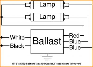 T8 Electronic Ballast Wiring Diagram - 10 4 Lamp T8 Ballast Wiring Diagram Relay Cable Inside 2 Cool Rh Justsayessto Me T8 Ballast Install T8 Electronic Ballast Wiring 5i