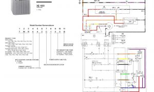 Trane Package Unit Wiring Diagram - Trane Baystat thermostat Wiring Diagram Collection Of Wiring Diagram U2022 Rh Wiringbase today Trane Heat Pump 17m