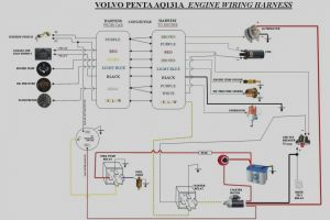 Volvo Ems2 Wiring Diagram - Unique Volvo Penta 4 3 Gl Wiring Diagram Diagrams 14d