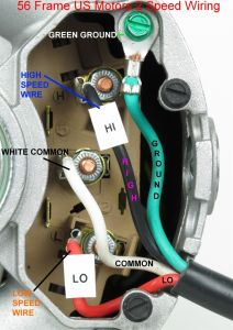 Waterway Executive 56 Pump Wiring Diagram - Waterway Executive 56 Pump Wiring Diagram Download 13 Waterway Spa Pump 1 I 1o